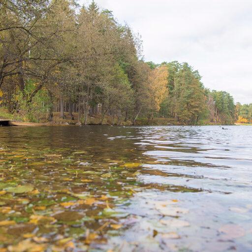 Кратовское озеро в октябре.