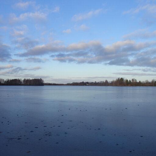 Бесснежная зима на финском озере.