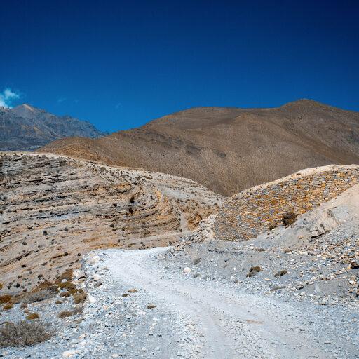 Nepal. Mustang c 12.5 Months