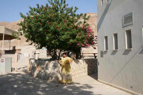 Зачаровывающий Израиль!!!
