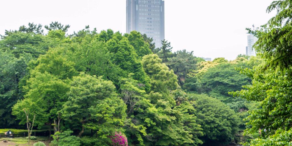 13 мая 2014, часть первая — Парк Синдзюку