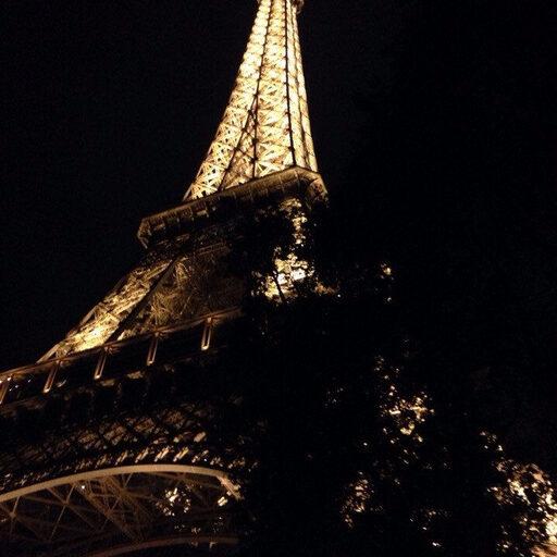 Поездка в Париж или купил билеты на самолет. Некуда деваться, работай на остальное.