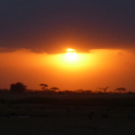 Кенийское солнце. Начало. Кибера. Расскажите этим людям как вы плохо живете