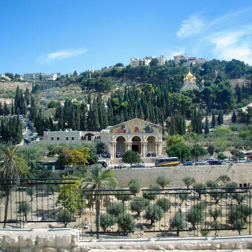 Суматошный день в Иерусалиме