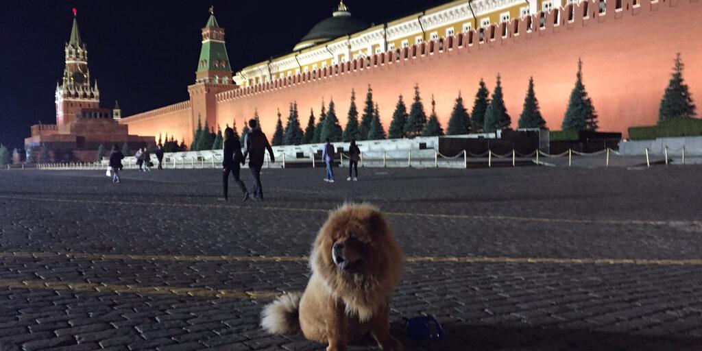 Москва… Красная площадь…