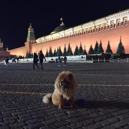 Москва…