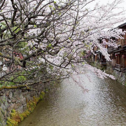 Прогулки по Киото: Гион