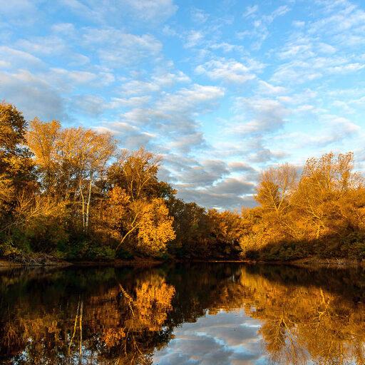 Осенние краски в Волго-Ахтубинской пойме