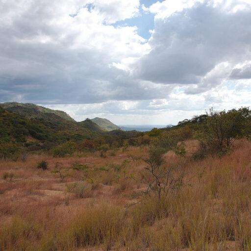 ВелоТанзания-2016. Часть третья. Дорогой в горы