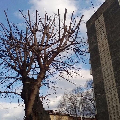 Подготовка к весне на станции Енисей