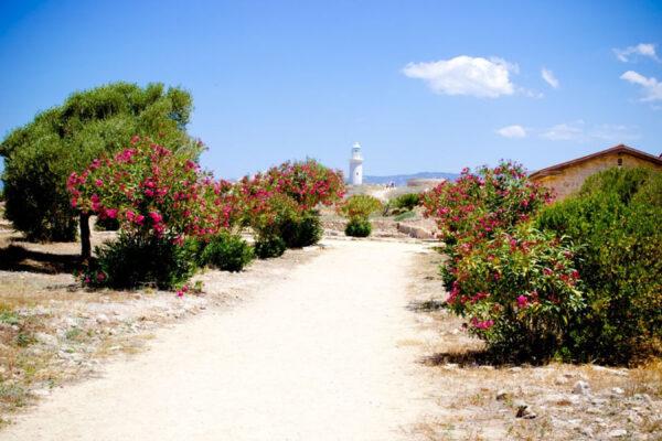 Кипр. Начало