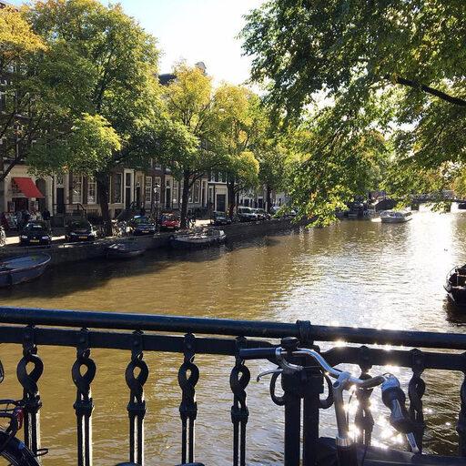 Безумный Амстердам