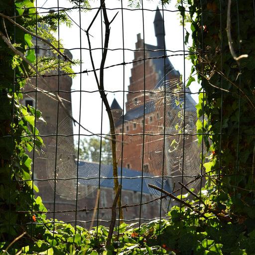 Руководство о том, как не надо ездить по замкам Бельгии.