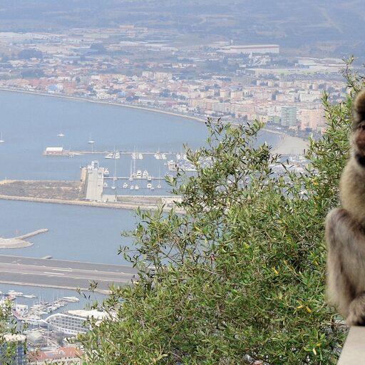 Гибралтар — Царство маготов