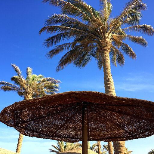 Пляжный Египет, в моем случае Хургада…