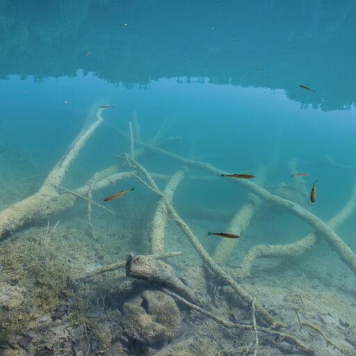 Хорватия, Плитвицкие озера