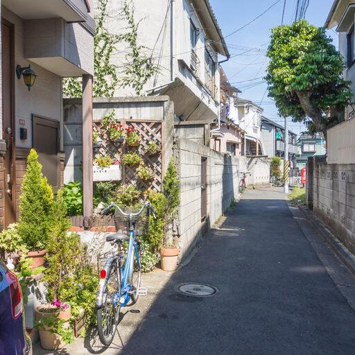 11 мая 2014, часть 2 — Коэндзи, котодом, Накано