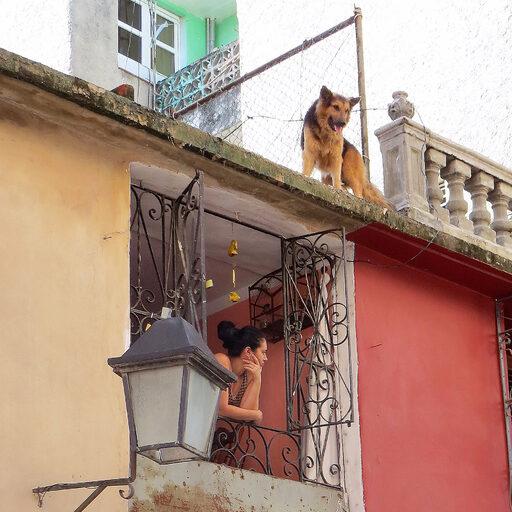 Куба напоминает о себе