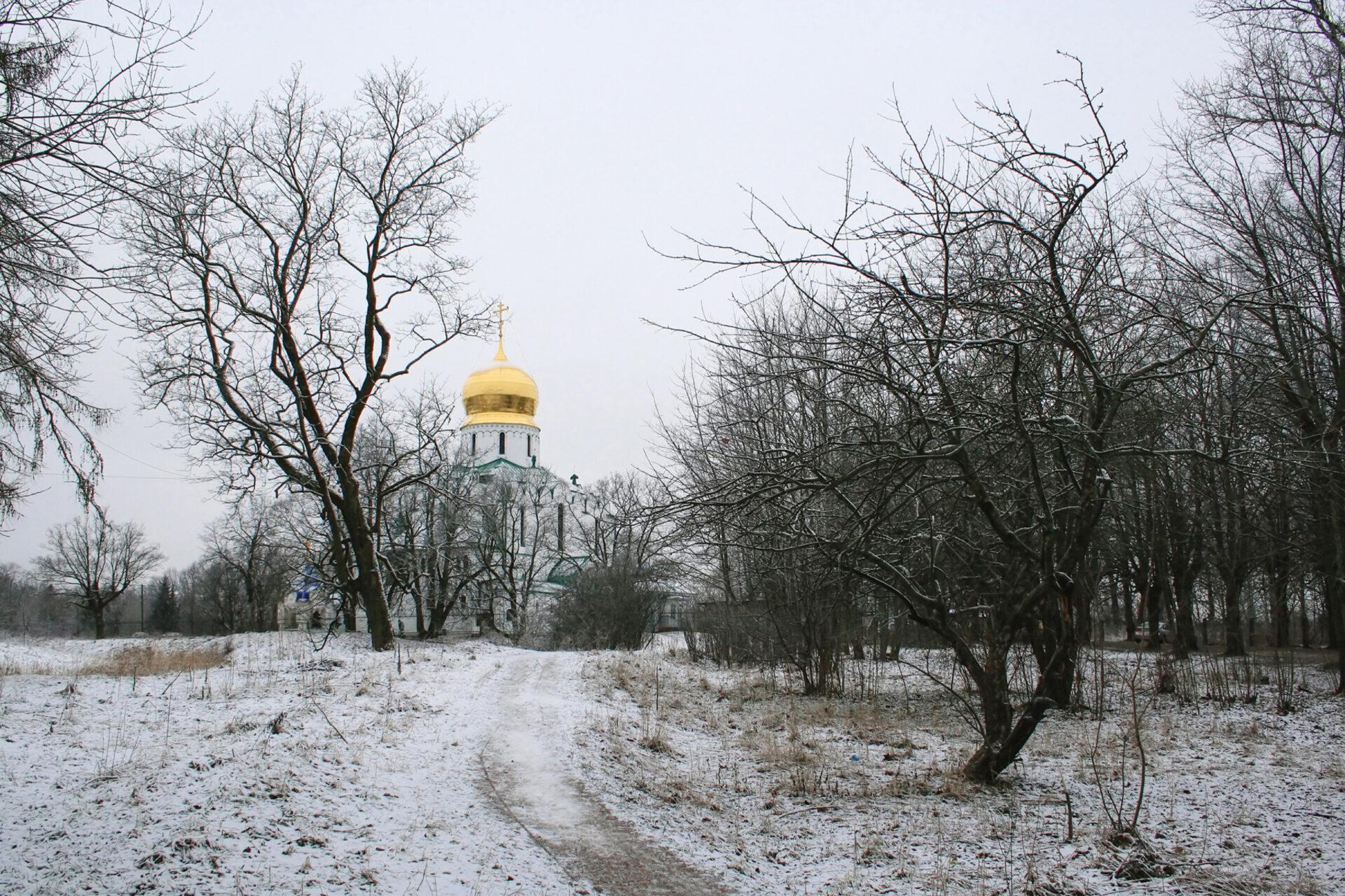Царское Село (Пушкин) Зима, иней, мороз исолнце.