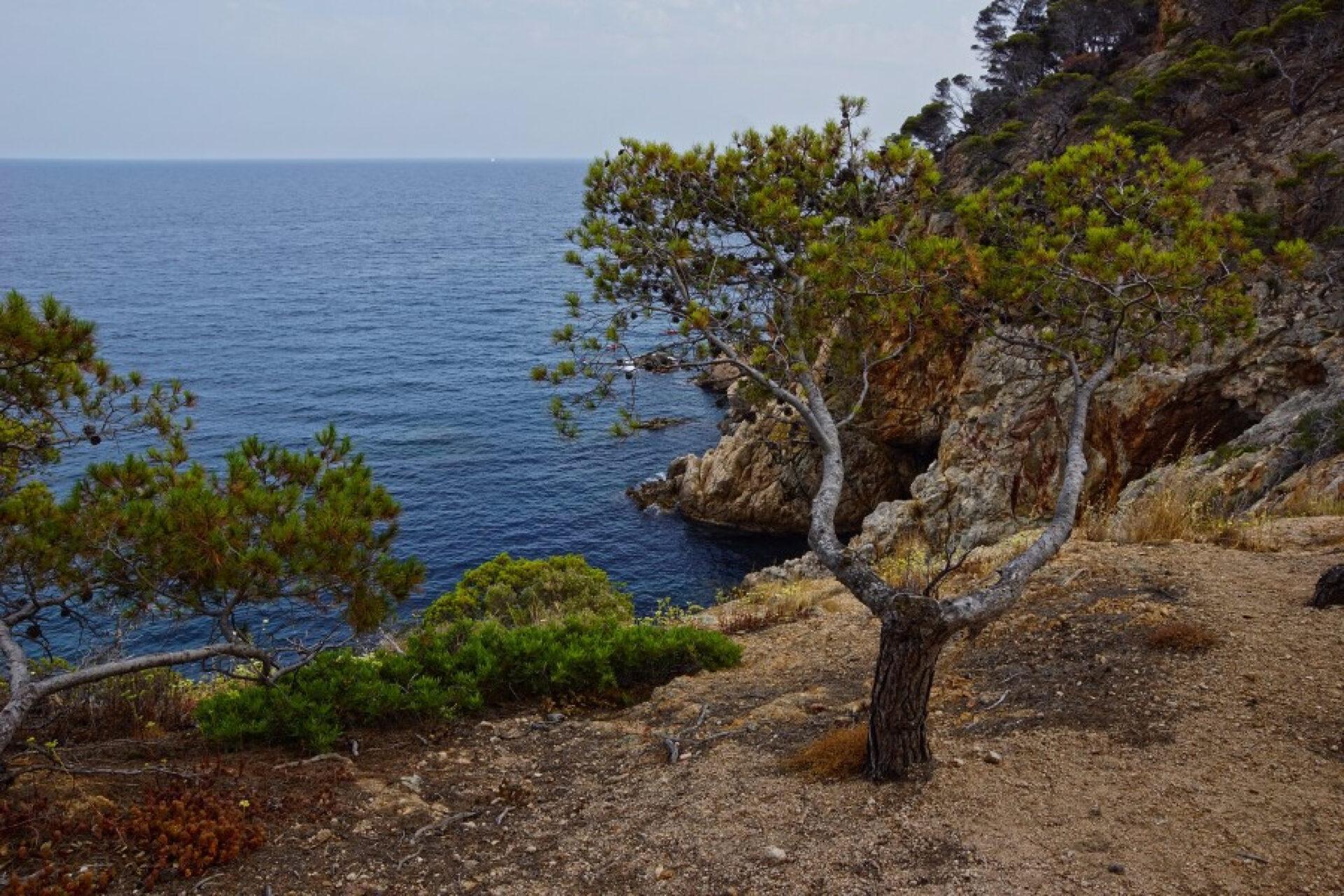Пляжи Коста Бравы (Испания)