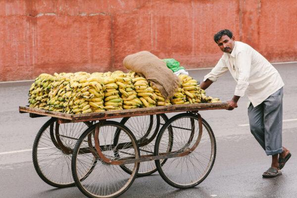 Индия. Часть 1 Нью-Дели, Джайпур иАгра