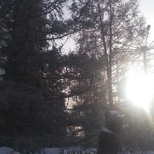 Солнышко в Красноярске